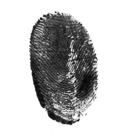 fingerprint pattern isolated on white Stock fotó