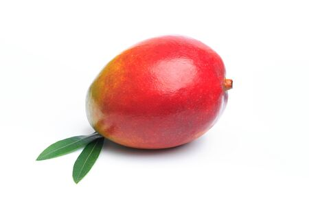 Ripe mango isolated on white. Mango Clipping Path