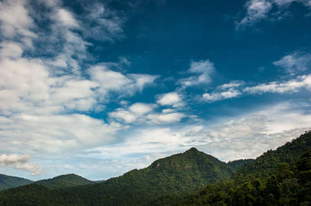 Mountains scenery background. Forest in  National Park.