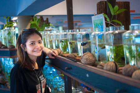 betta: A young woman traveler watching a Fighting Fish in Bottles  at Siamese Fighting Fish Gallery ,Thailand Stock Photo