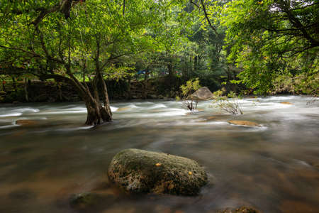 Photo of landscape in forest, forest waterfall and rocks in nature of Thailand