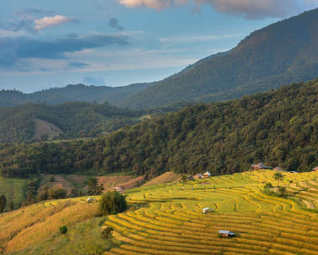 Beautiful landscape view of rice terraces and house on mountains beautiful shape in nature at pa-pong-peang rice terrace north Thailand.The village is in a valley among the rice terraces. Terraced Paddy Field in Mae-Jam Village chiang mai ,Thailand.