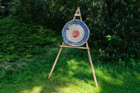 Two arrow to hit a target. photo