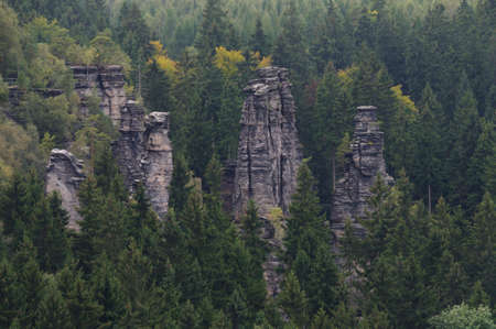 saxon: View in the Biela vally, Saxon Switzerland.