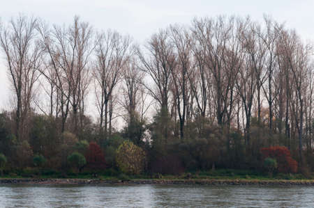 river scape: Autumnal river landscape along the Rhine in Germany. Stock Photo