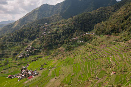 Rice terraces around Batad, Luzon Island, Philippines.