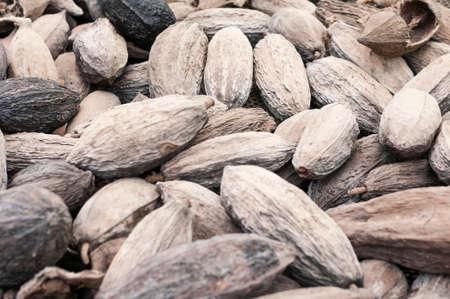 Dried cocoa fruits, fermentation.