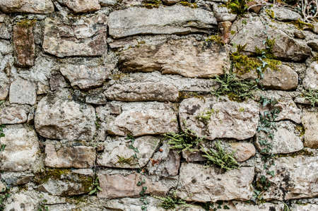 stone wall Stock Photo - 18159598