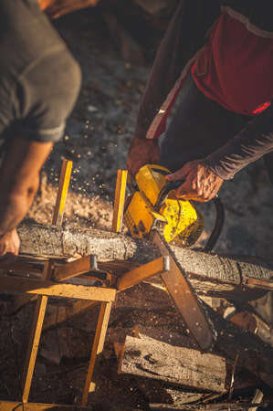 two people only: Cutting wood with Chainsaw