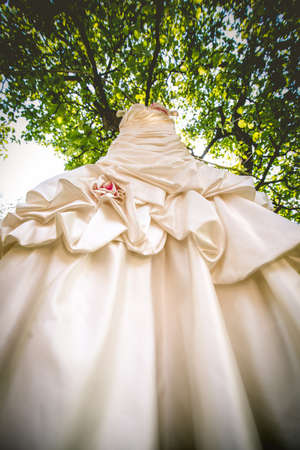 specific clothing: Brides wedding dress hanging on a branch.