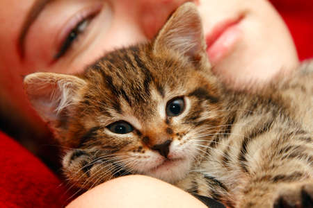 Love between girl and little tabby cat photo