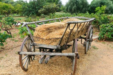 carreta madera: carro de madera con paja