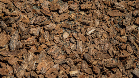 Crushed tree bark texture background closeup. Shredded brown tree bark for decoration and mulching or for playground