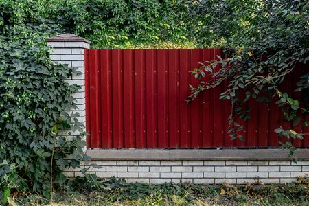 Fence made of panels of red corrugated sheet metal with grass in front and trees behind it Standard-Bild