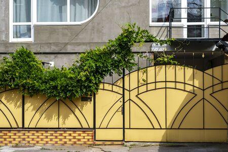 Yellow wrought iron gates with greenery near the house. Standard-Bild