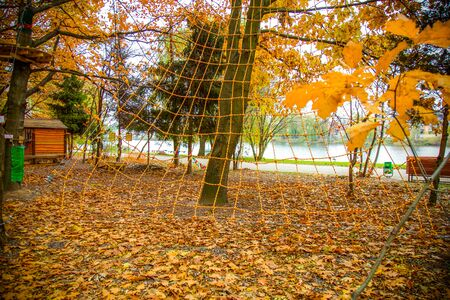 Rope Park in the fall.Recreation, entertainment. Climbing rides, zipline, rope snowboard. playing sports in nature. Stockfoto