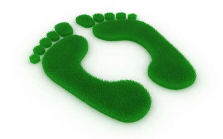 foot print: Print of feet in the form of a grass on a white background