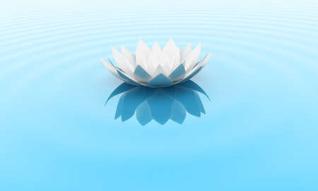 white lotus flower: Illustration of a flower of a lily on water