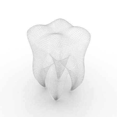 carious: Illustration of structure of human tooth on a white background