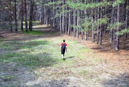 niño con mochila: El chico joven con una mochila caminando en el bosque