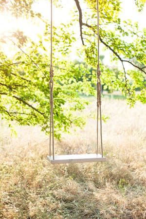 Swing op touw onder de grote boom Stockfoto