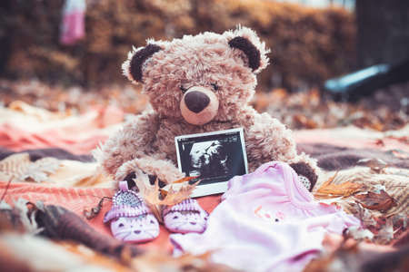 Bear cub with a photo of the child and childrens clothes Stock Photo