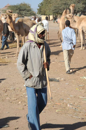 somalian:  The livestock market Editorial