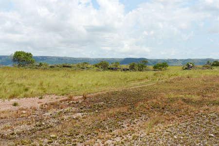 meta: Surrounding the river Guayabero.