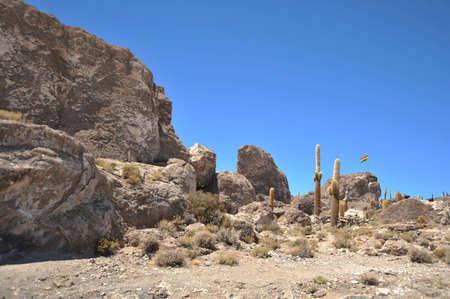 south island: Island Inca Wasi - cactus island