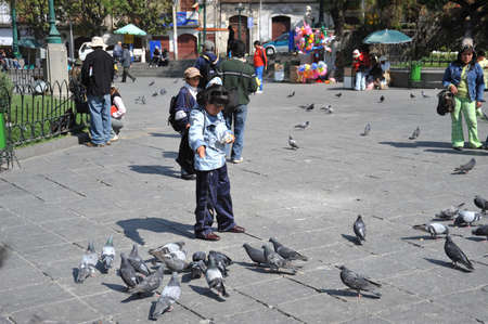 murillo: The area of Murillo in La Paz