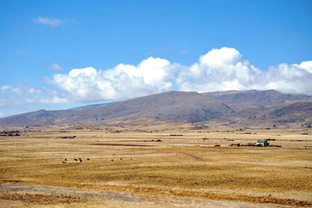 vicinity: Landscape in the vicinity of Tiahuanaco Stock Photo