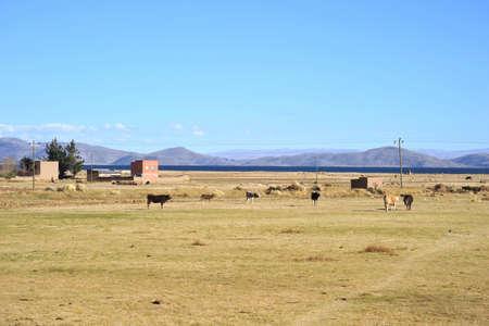 surroundings: Surroundings mountain lake Titicaca Stock Photo