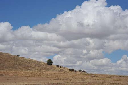 bolivia: Altiplano, Bolivia