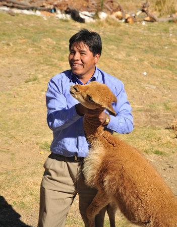vicuna: Bolivian man with a vicuna. Editorial