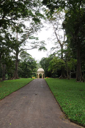 botanical gardens: Unique Royal Botanical gardens in Peradeniya is considered as one of the best in Asia Editorial