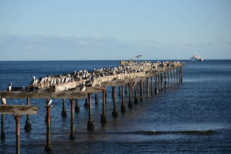 strait of magellan: The Strait of Magellan at Punta arenas.