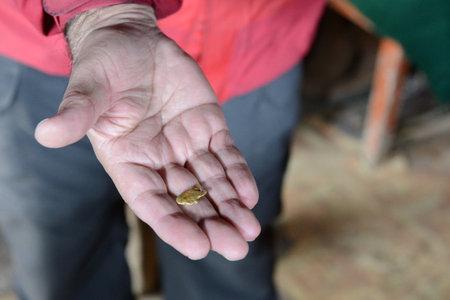 tierra del fuego: A gold nugget was found at the mine in Tierra del Fuego