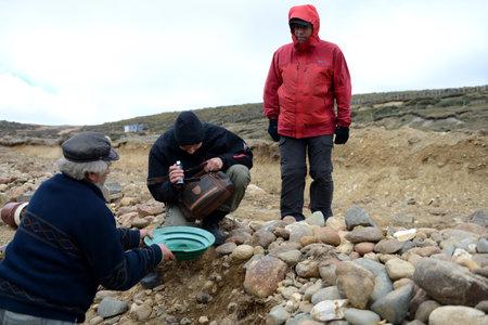 prospector: Buscador de oro muestra turistas arena de oro aluvial extraído en la mina en la isla de Tierra del Fuego. Editorial