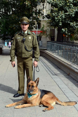 karabiner: Karabiner-a dog on the street of Santiago.