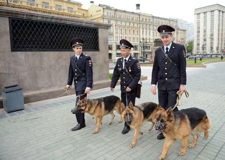 police dog: Police dog handlers in Moscow. Editorial