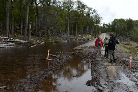 flooded: The road flooded because of the actions of beavers who built the dam.