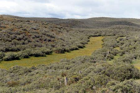 tierra del fuego: Tierra Del Fuego.