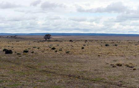 tierra: Tierra Del Fuego.