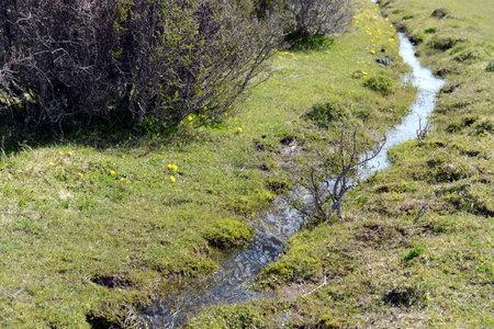 tierra del fuego: Stream in Tierra Del Fuego.