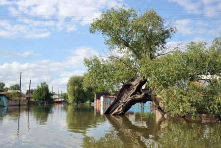 Flood. The river Ob, which emerged from the shores, flooded the outskirts of the city.