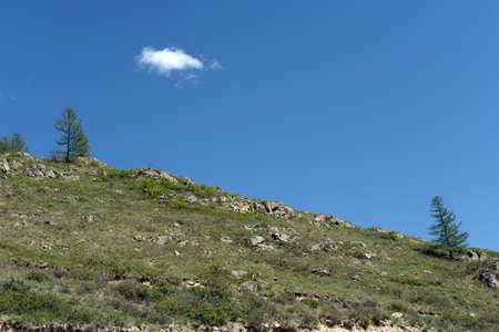 Mountain landscape on the pass Chike-Taman. Mountain Altai Фото со стока