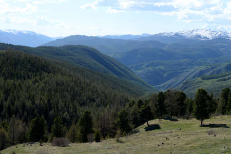 Mountain landscape in the area of ??the river Yarlyamry. Mountain Altai