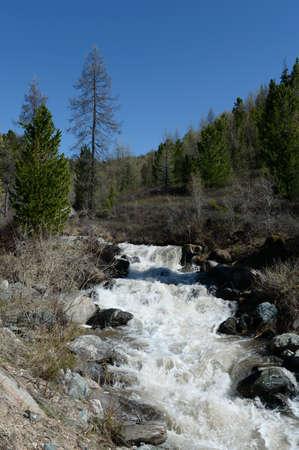 Mountain river Yarlyamry in the Altai Republic. Siberia. Russia Stock Photo