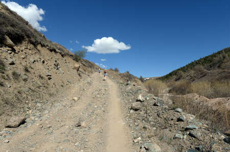 Mountain road in the area of ??the river Yarlyamry. Mountain Altai.Siberia. Russia