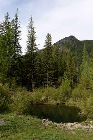 Geysernoe Lake, Aktash, Ulagansky District, Gorny Altai, Siberia, Russia Stock fotó